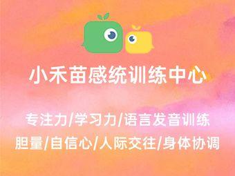 小禾苗感统训练中心(老岳讲感统分店)