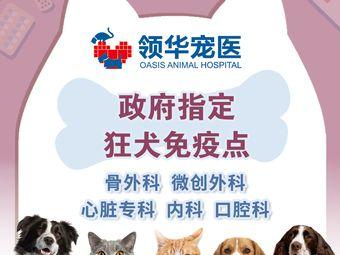 领华宠医·苏州爱牠动物医院·急诊外科中心
