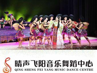晴声飞阳音乐舞蹈中心(侯家塘校区)