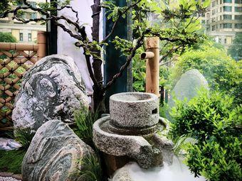 雨林古树茶·淡宁居