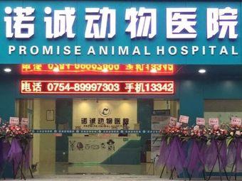 诺诚动物医院 骨科·猫专科