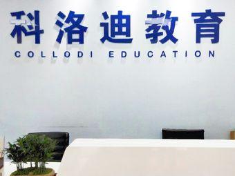 科洛迪教育