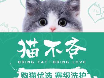 猫不吝·宠舍生活馆(江泰路店)