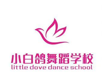 小白鸽专业舞蹈(高新校区)