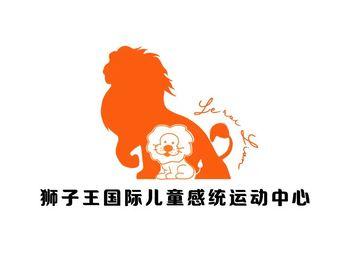 狮子王国际儿童感统运动中心