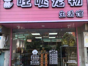 旺哒宠物生活馆