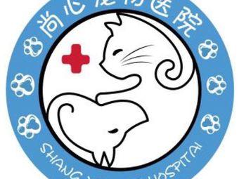 尚心宠物医院一犬猫外科中心