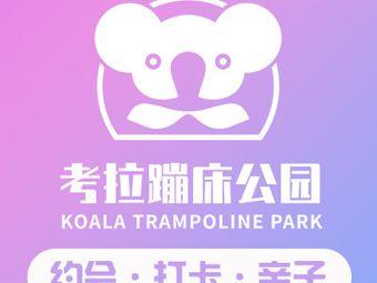 考拉蹦床公园