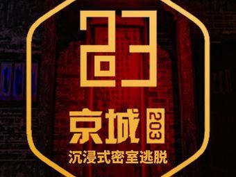 京城203沉浸式演绎密室(之心城店)