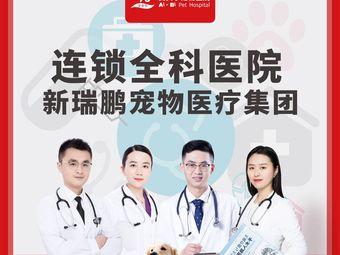 艾贝尔宠物医院(云龙华府分院)