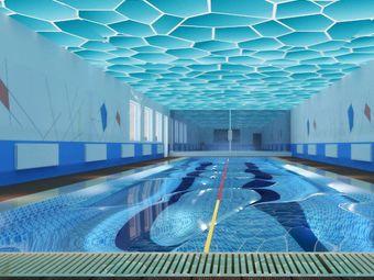 泳树游泳馆