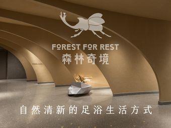 森林奇境·沐足SPA(解放碑旗舰店)