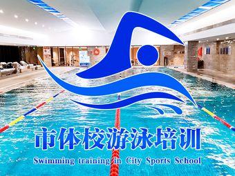 市体校游泳培训