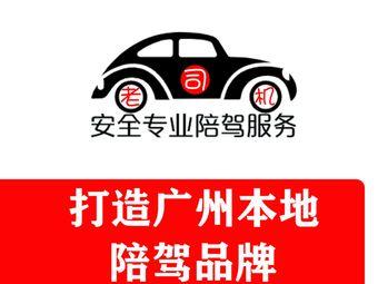 广州老司机新手有证陪驾陪练