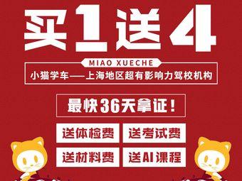 小猫学车机构(四平店)