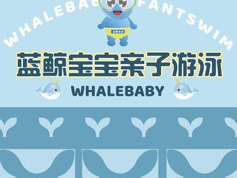 藍鯨寶寶親子游泳中心