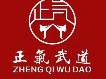 正气武术跆拳道舞蹈培训