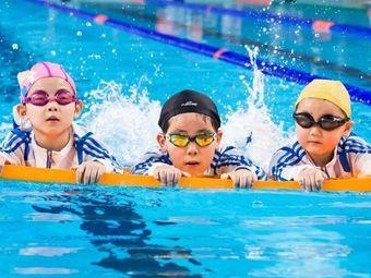 金海豚0-12岁专业游泳拓展训练馆