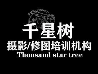 千星树摄影/修图培训机构