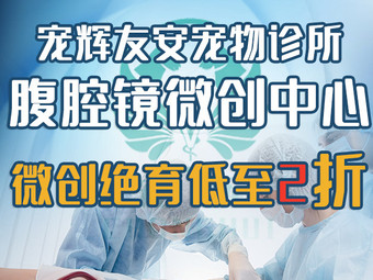 宠辉·友安宠物诊所·腹腔镜微创手术中心