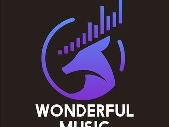 Wonderful Music精彩流行音乐