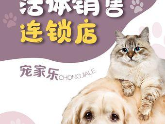 VIP宠家宠物犬猫活体