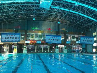 新健力体育中心·游泳中心