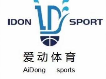 爱动体育羽毛球·篮球培训(精英汇东升店)