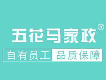 五花马家政(铜山万达店)