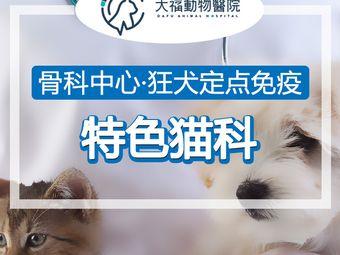 大福动物医院|猫科中心|转诊中心