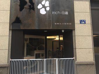 inch·印趣宠物生活理想国