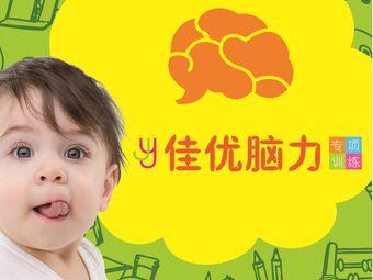 佳优脑力专项训练·右脑全脑教育