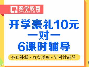 秦学教育(新民校区)