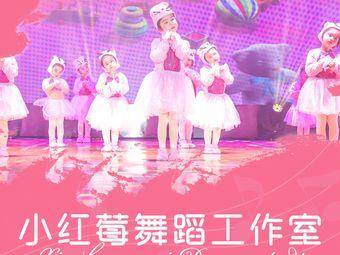 小红莓舞蹈(观潮路店)