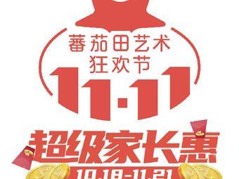 蕃茄田艺术(十堰校区)