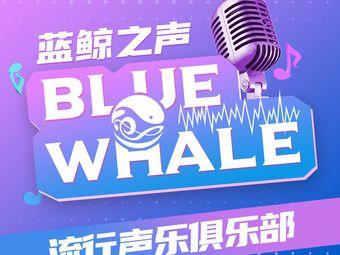 蓝鲸之声&Music Club(国贸店)