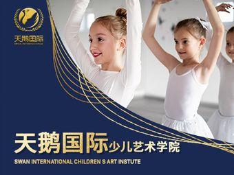 天鹅国际少儿艺术学院(浐灞中心校区)