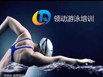 领动游泳培训(苏宁广场店)