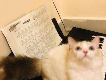 猫宿咖啡酒馆·猫咖