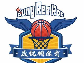 晟锐鹏篮球训练学校