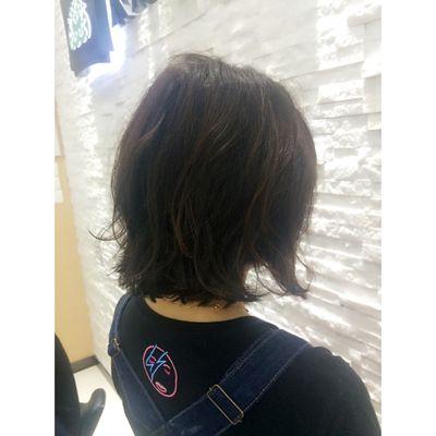 王金龙剪发作品图