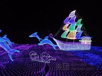 臨泉國際燈光藝術節