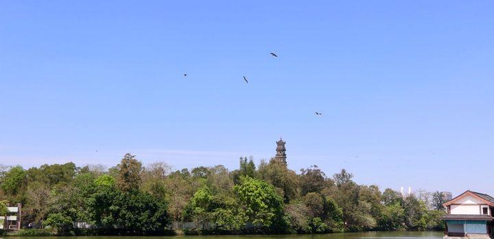 【惠州】本城必玩的景点