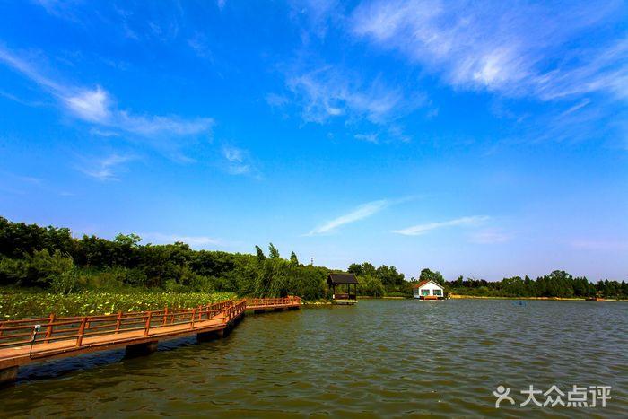 容南風景生態園圖片 - 第8張