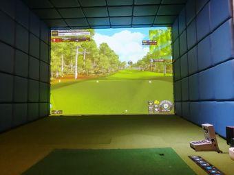 伍兹模拟高尔夫室内娱乐