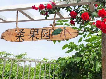 周氏桑葚采摘园