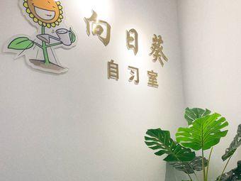 向日葵自习室