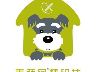 麦萌宠物(国贸360店)