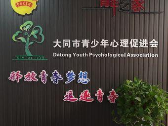 青少年心理促进会