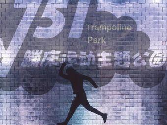 751蹦床运动主题公园
